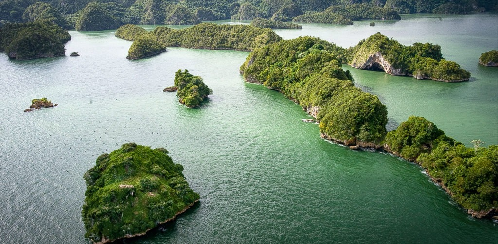 Aerial view of Los Haitises Cave, excursions in Samana, Dominican Republic