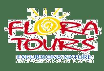 kitesurf dominican republic las terrenas tours excursions